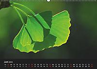 Laub und Blätter 2019 (Wandkalender 2019 DIN A2 quer) - Produktdetailbild 6