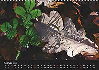 Laub und Blätter 2019 (Wandkalender 2019 DIN A2 quer) - Produktdetailbild 2