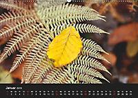 Laub und Blätter 2019 (Wandkalender 2019 DIN A2 quer) - Produktdetailbild 1