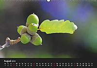 Laub und Blätter 2019 (Wandkalender 2019 DIN A2 quer) - Produktdetailbild 8