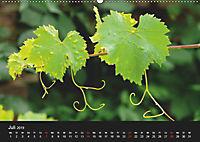 Laub und Blätter 2019 (Wandkalender 2019 DIN A2 quer) - Produktdetailbild 7