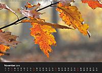 Laub und Blätter 2019 (Wandkalender 2019 DIN A2 quer) - Produktdetailbild 11
