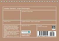 Lausitzer Seenland - Junge Urlaubsregion mit einzigartiger Wasserlandschaft (Tischkalender 2019 DIN A5 quer) - Produktdetailbild 13