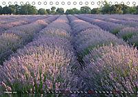 Lavendel. Der Duft der Provence (Tischkalender 2019 DIN A5 quer) - Produktdetailbild 10
