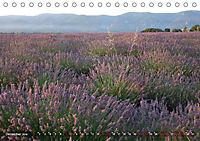 Lavendel. Der Duft der Provence (Tischkalender 2019 DIN A5 quer) - Produktdetailbild 12