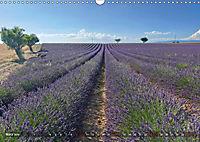 Lavendel. Der Duft der Provence (Wandkalender 2019 DIN A3 quer) - Produktdetailbild 3
