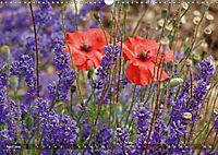 Lavendel. Der Duft der Provence (Wandkalender 2019 DIN A3 quer) - Produktdetailbild 4