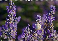 Lavendel. Der Duft der Provence (Wandkalender 2019 DIN A3 quer) - Produktdetailbild 8