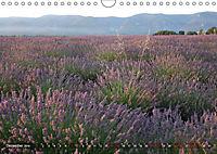Lavendel. Der Duft der Provence (Wandkalender 2019 DIN A4 quer) - Produktdetailbild 12