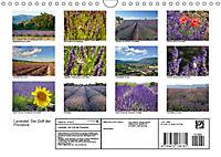 Lavendel. Der Duft der Provence (Wandkalender 2019 DIN A4 quer) - Produktdetailbild 13