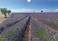Lavender, the scent of Provence (Wall Calendar 2019 DIN A4 Landscape) - Produktdetailbild 12