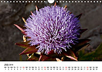 Le Marche the unknown Italy (Wall Calendar 2019 DIN A4 Landscape) - Produktdetailbild 7