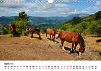 Le Marche the unknown Italy (Wall Calendar 2019 DIN A4 Landscape) - Produktdetailbild 4
