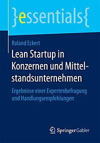 the lean startup pdf ebook