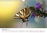Leben in freier Natur - Wildtiere in natürlicher Umgebung (Wandkalender 2019 DIN A4 quer) - Produktdetailbild 12