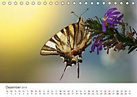 Leben in freier Natur - Wildtiere in natürlicher Umgebung (Tischkalender 2019 DIN A5 quer) - Produktdetailbild 12
