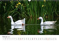 Leben in freier Natur - Wildtiere in natürlicher Umgebung (Wandkalender 2019 DIN A3 quer) - Produktdetailbild 2
