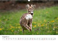 Leben in freier Natur - Wildtiere in natürlicher Umgebung (Wandkalender 2019 DIN A3 quer) - Produktdetailbild 8