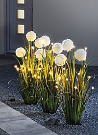 "LED-Blumendeko ""Allium"" - Produktdetailbild 3"
