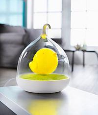 LED-Vogel - Produktdetailbild 2
