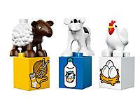 LEGO® 10617 DUPLO - Mein erster Bauernhof - Produktdetailbild 5