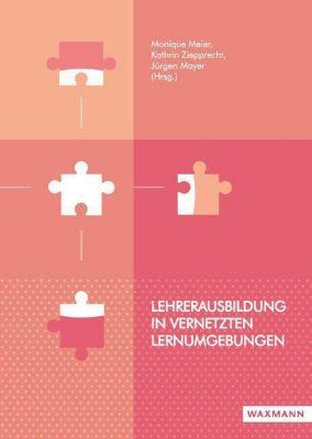 Lehrerausbildung in vernetzten Lernumgebungen -  pdf epub