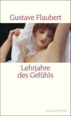Lehrjahre des Gefühls - Gustave Flaubert pdf epub