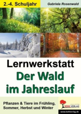 Lernwerkstatt Der Wald im Jahreslauf, Gabriela Rosenwald
