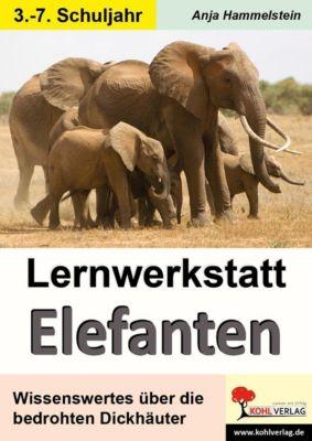 Lernwerkstatt Elefanten, Anja Hammelstein