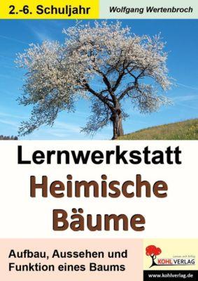 Lernwerkstatt Heimische Bäume, Wolfgang Wertenbroch