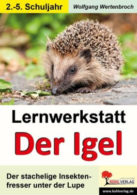 Lernwerkstatt Igel, Wolfgang Wertenbroch
