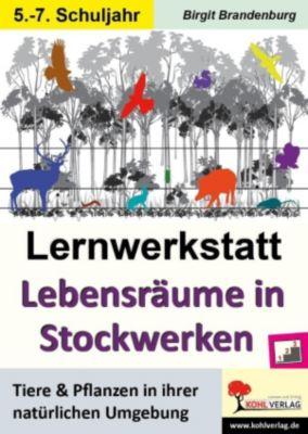 Lernwerkstatt Lebensräume in Stockwerken, Birgit Brandenburg