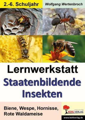 Lernwerkstatt Staatenbildende Insekten, Wolfgang Wertenbroch