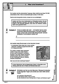 Lernwerkstatt Staatenbildende Insekten - Produktdetailbild 6