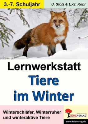 Lernwerkstatt Tiere im Winter, Ulrike Stolz, Lynn S Kohl