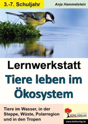 Lernwerkstatt Tiere leben im Ökosystem, Anja Hammelstein