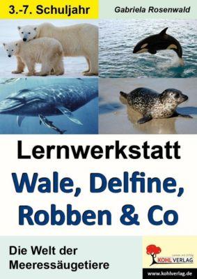 Lernwerkstatt Wale, Delfine, Robben & Co., Gabriela Rosenwald
