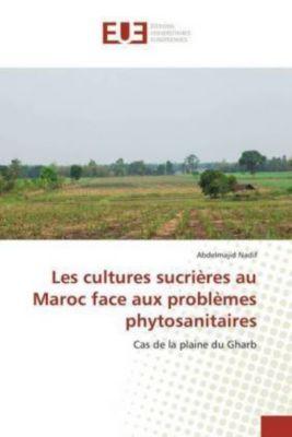 Les cultures sucrières au Maroc face aux problèmes phytosanitaires, Abdelmajid Nadif