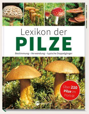 Lexikon der Pilze - Hans W. Kothe |