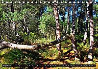 Licht und Schatten - Herbst im Südschwarzwald (Tischkalender 2019 DIN A5 quer) - Produktdetailbild 8