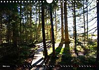 Licht und Schatten - Herbst im Südschwarzwald (Wandkalender 2019 DIN A4 quer) - Produktdetailbild 3
