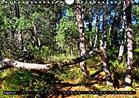 Licht und Schatten - Herbst im Südschwarzwald (Wandkalender 2019 DIN A4 quer) - Produktdetailbild 8
