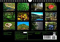 Licht und Schatten - Herbst im Südschwarzwald (Wandkalender 2019 DIN A4 quer) - Produktdetailbild 13
