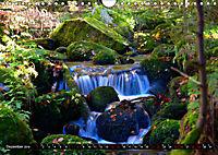 Licht und Schatten - Herbst im Südschwarzwald (Wandkalender 2019 DIN A4 quer) - Produktdetailbild 12