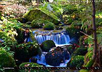 Licht und Schatten - Herbst im Südschwarzwald (Wandkalender 2019 DIN A3 quer) - Produktdetailbild 12