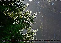 Licht und Schatten - Herbst im Südschwarzwald (Wandkalender 2019 DIN A3 quer) - Produktdetailbild 11