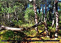 Licht und Schatten - Herbst im Südschwarzwald (Wandkalender 2019 DIN A3 quer) - Produktdetailbild 8