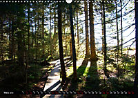 Licht und Schatten - Herbst im Südschwarzwald (Wandkalender 2019 DIN A3 quer) - Produktdetailbild 3