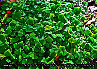 Licht und Schatten - Herbst im Südschwarzwald (Wandkalender 2019 DIN A2 quer) - Produktdetailbild 2