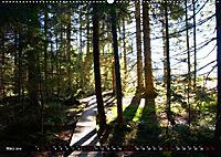 Licht und Schatten - Herbst im Südschwarzwald (Wandkalender 2019 DIN A2 quer) - Produktdetailbild 3